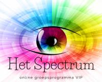Het Spectrum - online groepsprogramma VIP